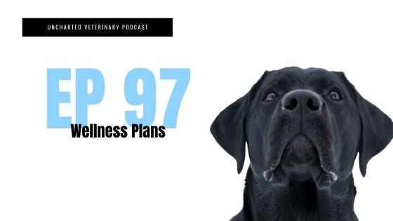 Veterinary Wellness Plans