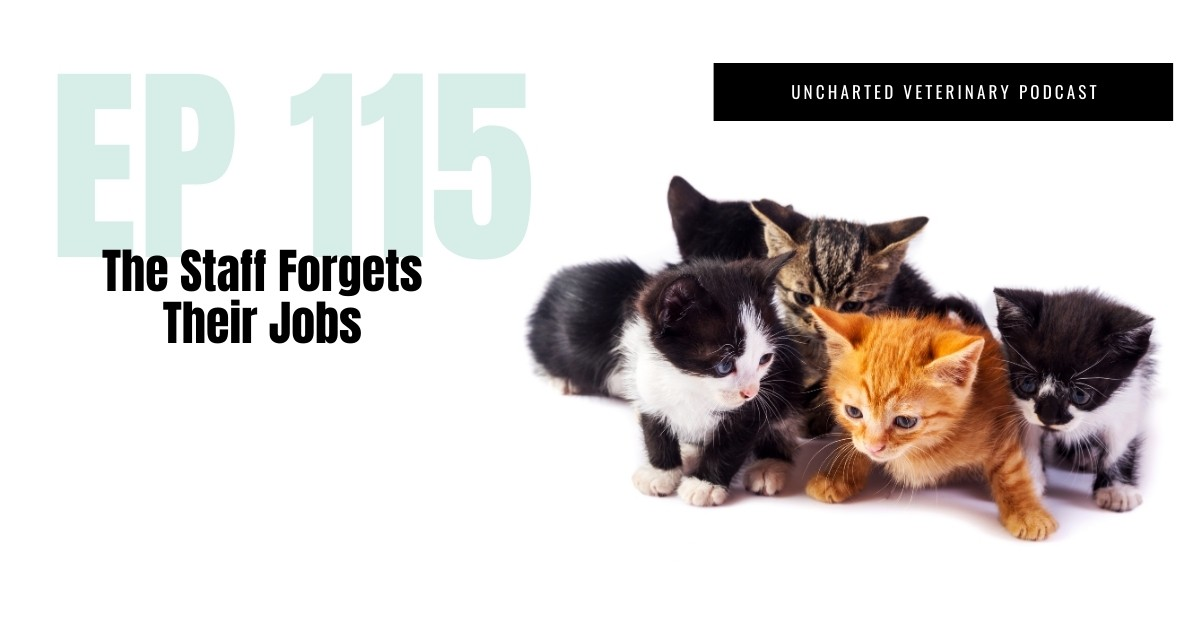 Vet Staff Forgets their jobs