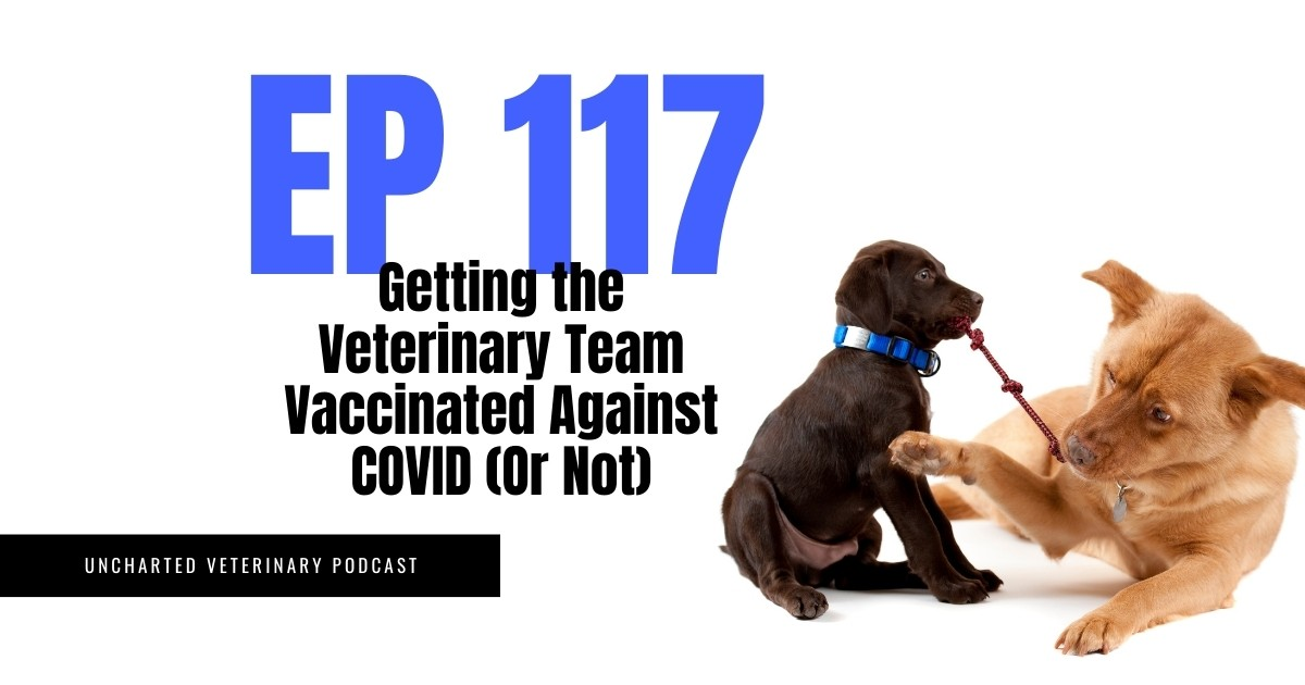 Getting the Veterinary Team Vaccinated