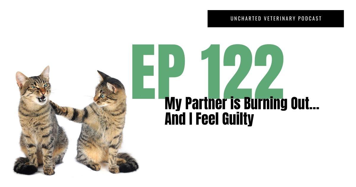 veterinary partner burning out