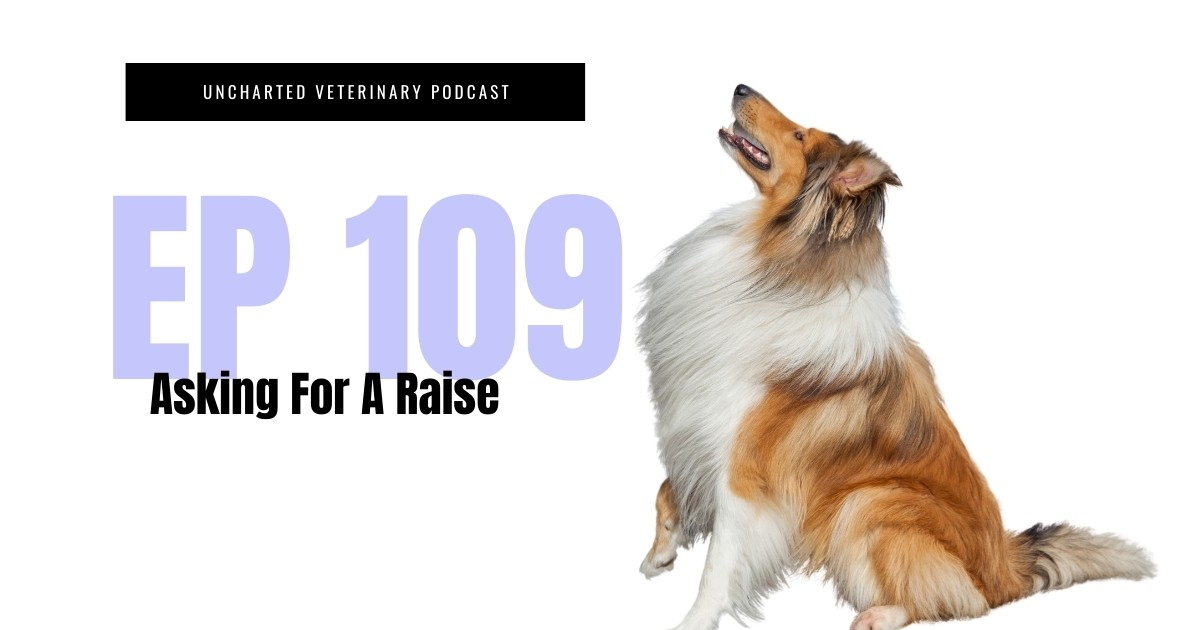 Veterinary Professional Ask for a raise