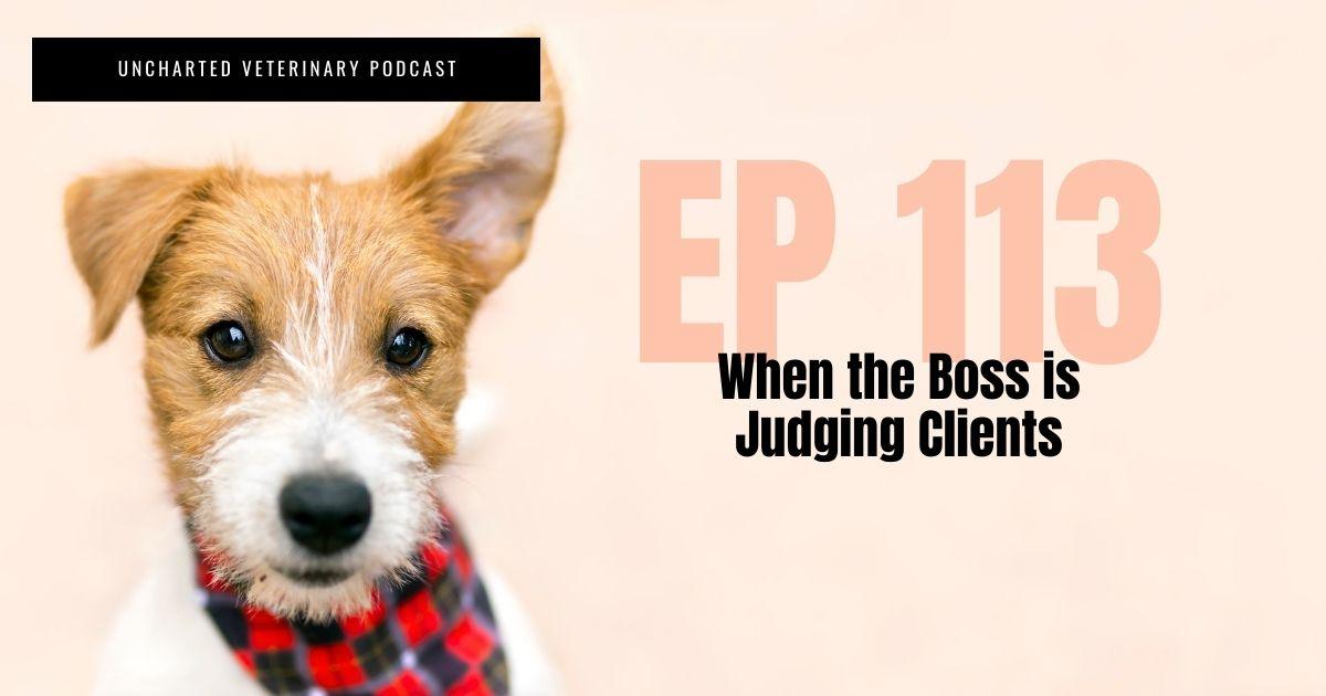 Boss judging veterinary clients