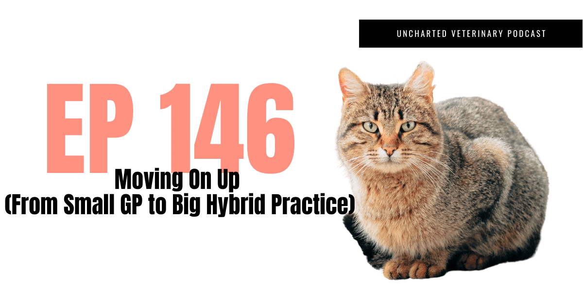 Uncharted Veterinary Podcast Episode 146 - Moving on up from small gp to big hybrid practice