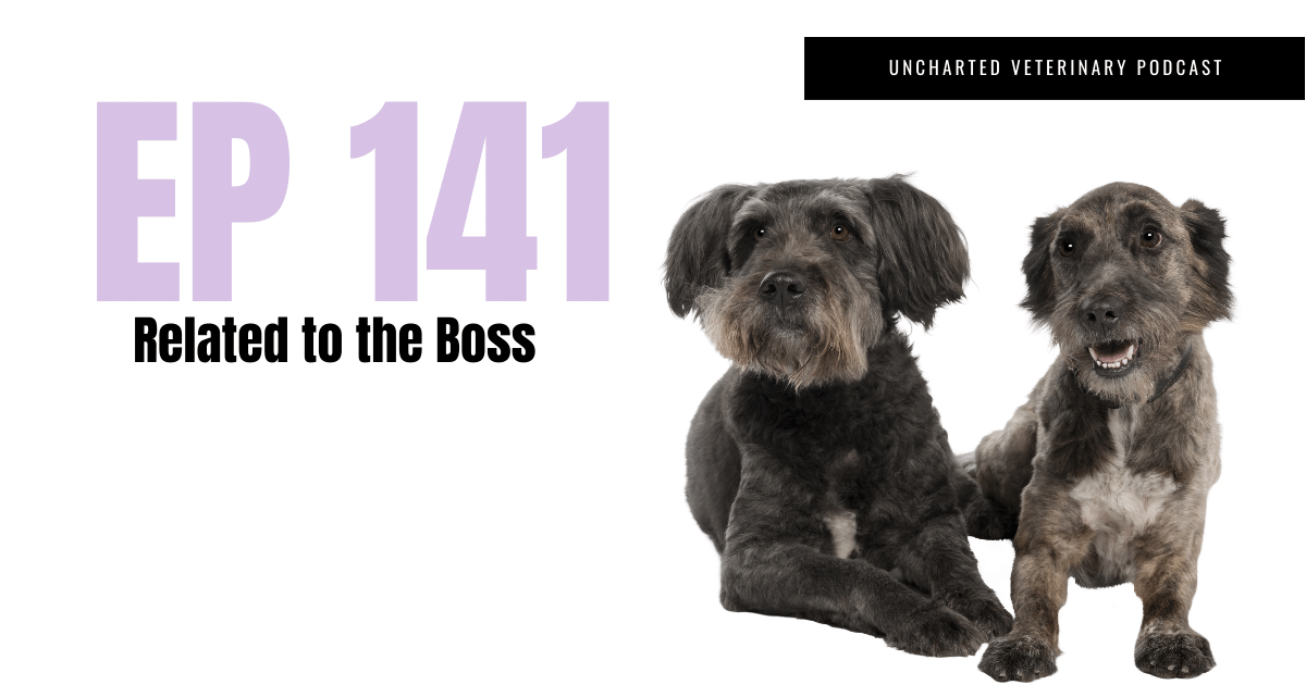 Uncharted Veterinary Podcast Episode 141 related to the boss