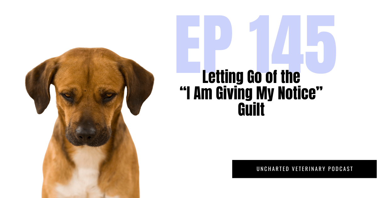 """Uncharted Veterinary Podcast Episode 145 - Letting go of the """"I am giving my notice"""" guilt"""