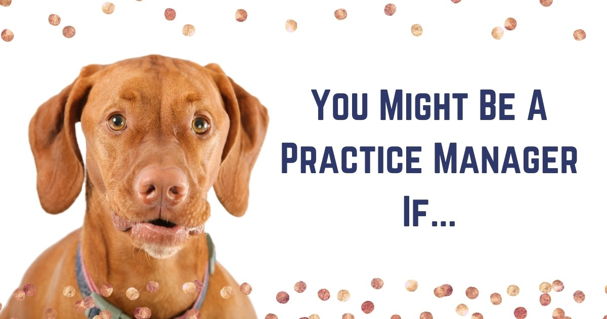 Veterinary Practice Manager