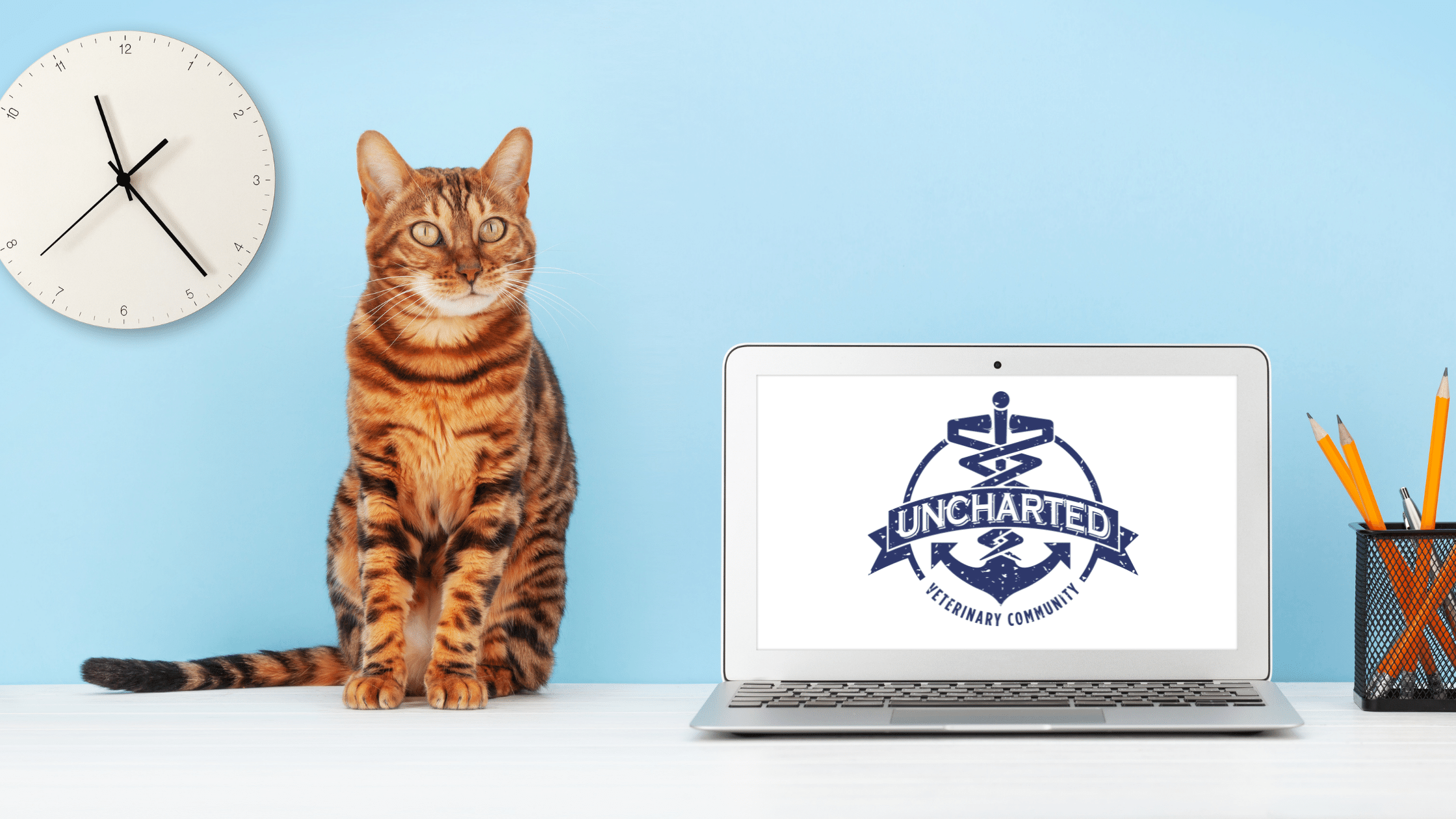 Photo of a cat next to a computer with the Uncharted Community logo